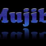 amra mujibshena3